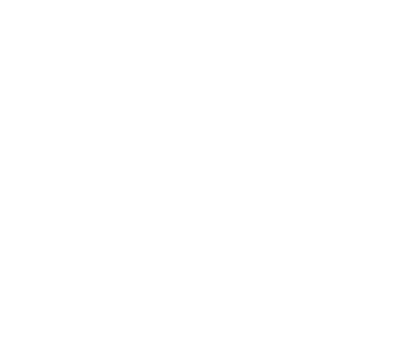 Conferences